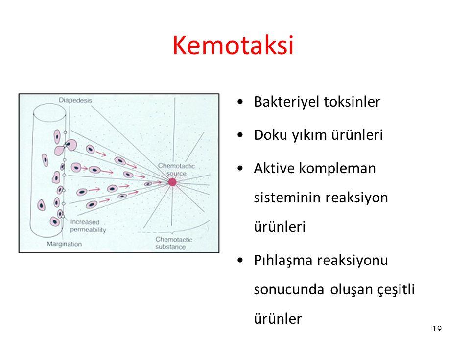 Bakteriyel toksinler Doku yıkım ürünleri Aktive kompleman sisteminin reaksiyon ürünleri Pıhlaşma reaksiyonu sonucunda oluşan çeşitli ürünler 19 Kemota