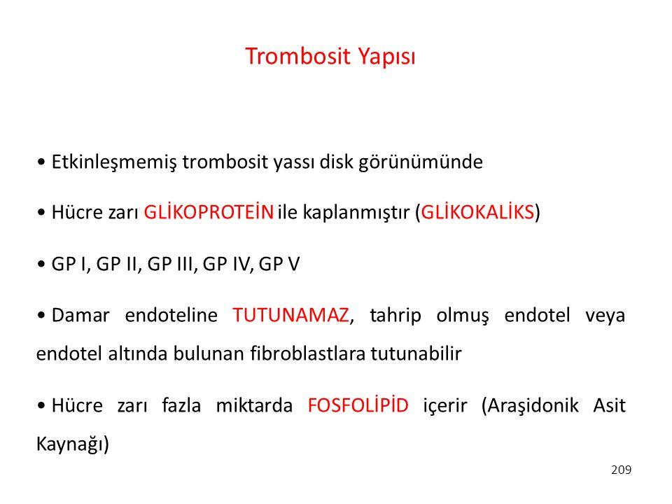 209 Trombosit Yapısı Etkinleşmemiş trombosit yassı disk görünümünde Hücre zarı GLİKOPROTEİN ile kaplanmıştır (GLİKOKALİKS) GP I, GP II, GP III, GP IV,