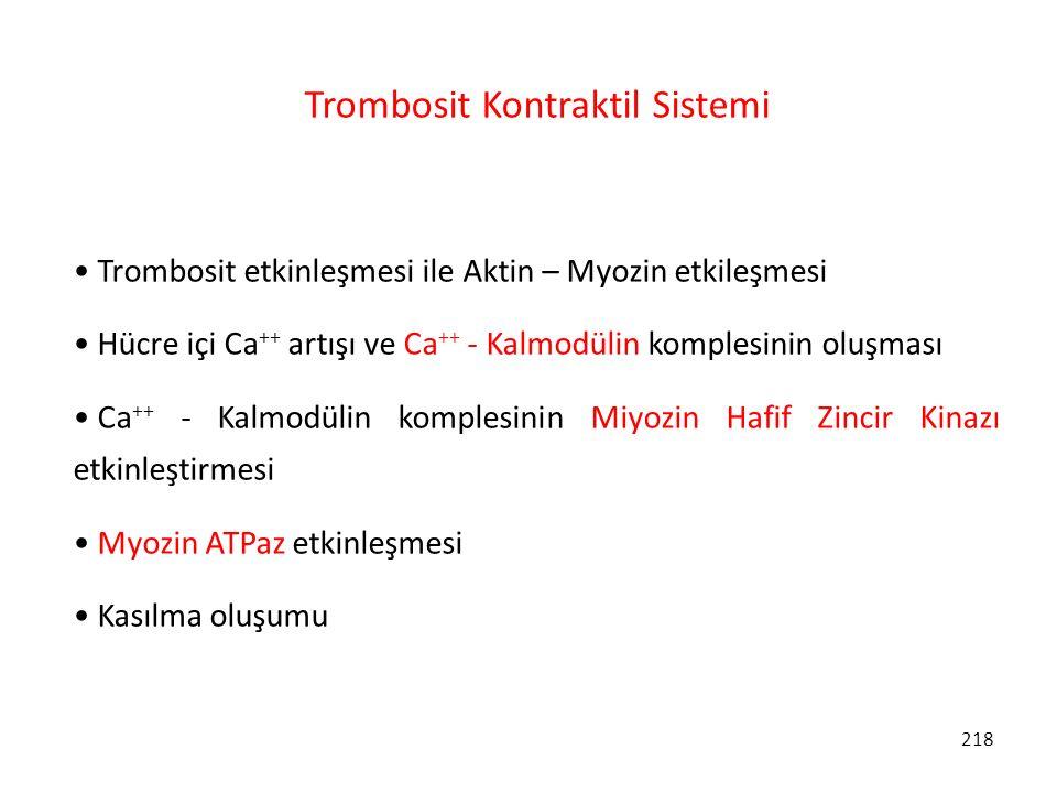 218 Trombosit Kontraktil Sistemi Trombosit etkinleşmesi ile Aktin – Myozin etkileşmesi Hücre içi Ca ++ artışı ve Ca ++ - Kalmodülin komplesinin oluşma