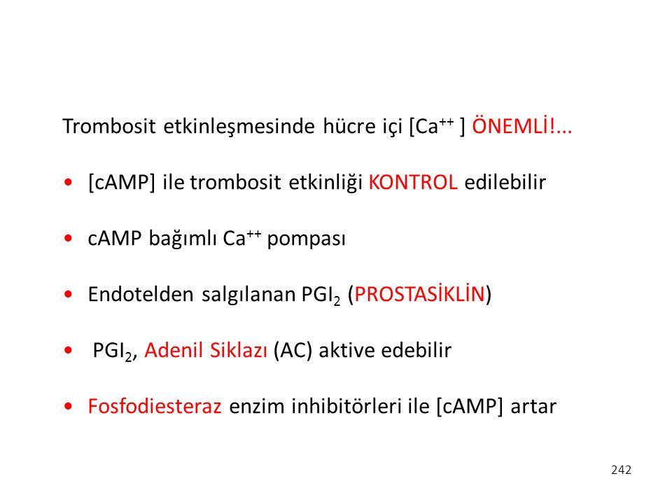 242 Trombosit etkinleşmesinde hücre içi [Ca ++ ] ÖNEMLİ!... [cAMP] ile trombosit etkinliği KONTROL edilebilir cAMP bağımlı Ca ++ pompası Endotelden sa