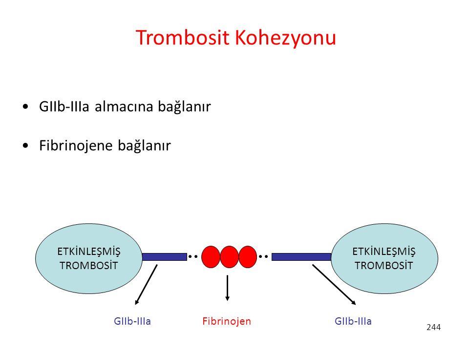 244 Trombosit Kohezyonu GIIb-IIIa almacına bağlanır Fibrinojene bağlanır ETKİNLEŞMİŞ TROMBOSİT ETKİNLEŞMİŞ TROMBOSİT GIIb-IIIa Fibrinojen GIIb-IIIa