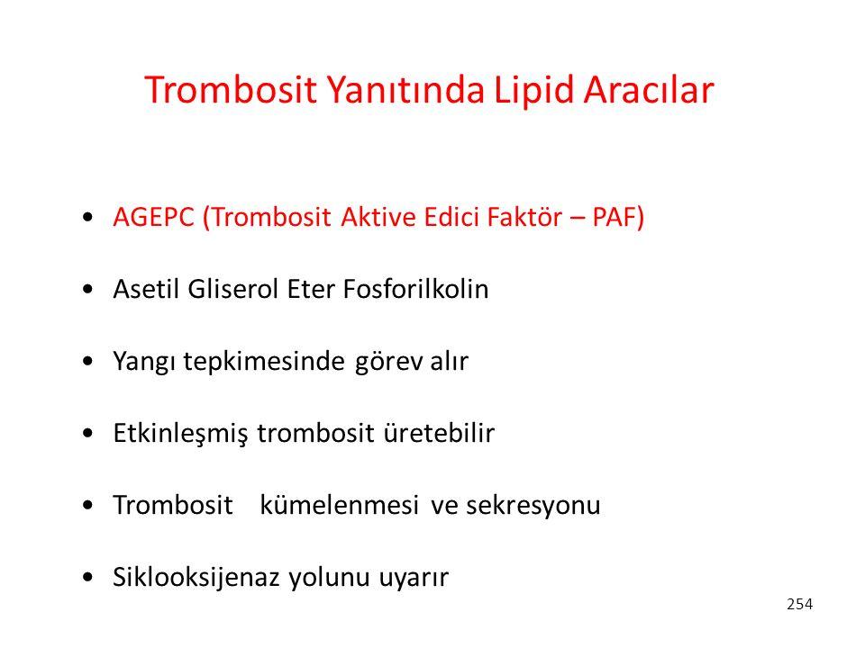 254 Trombosit Yanıtında Lipid Aracılar AGEPC (Trombosit Aktive Edici Faktör – PAF) Asetil Gliserol Eter Fosforilkolin Yangı tepkimesinde görev alır Et