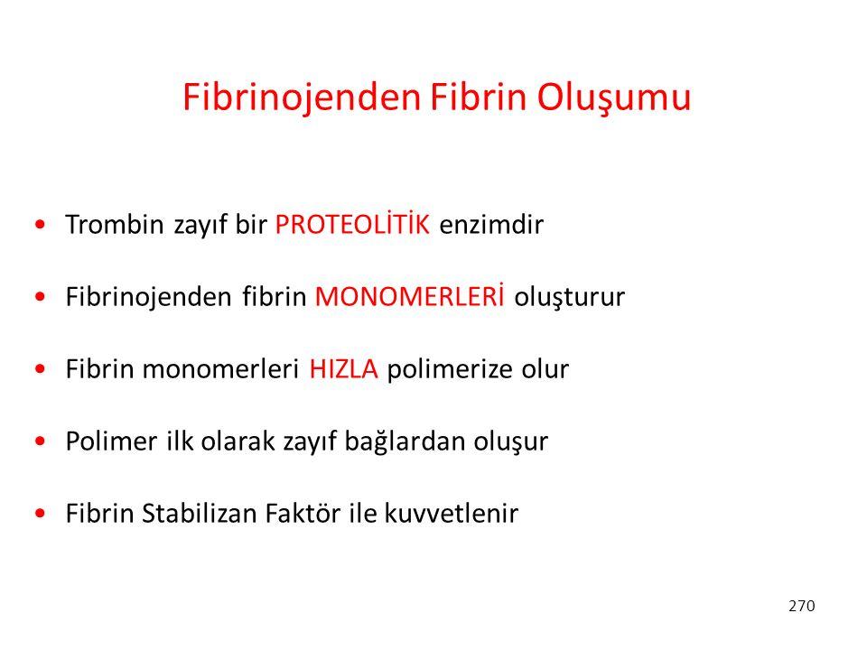 270 Fibrinojenden Fibrin Oluşumu Trombin zayıf bir PROTEOLİTİK enzimdir Fibrinojenden fibrin MONOMERLERİ oluşturur Fibrin monomerleri HIZLA polimerize