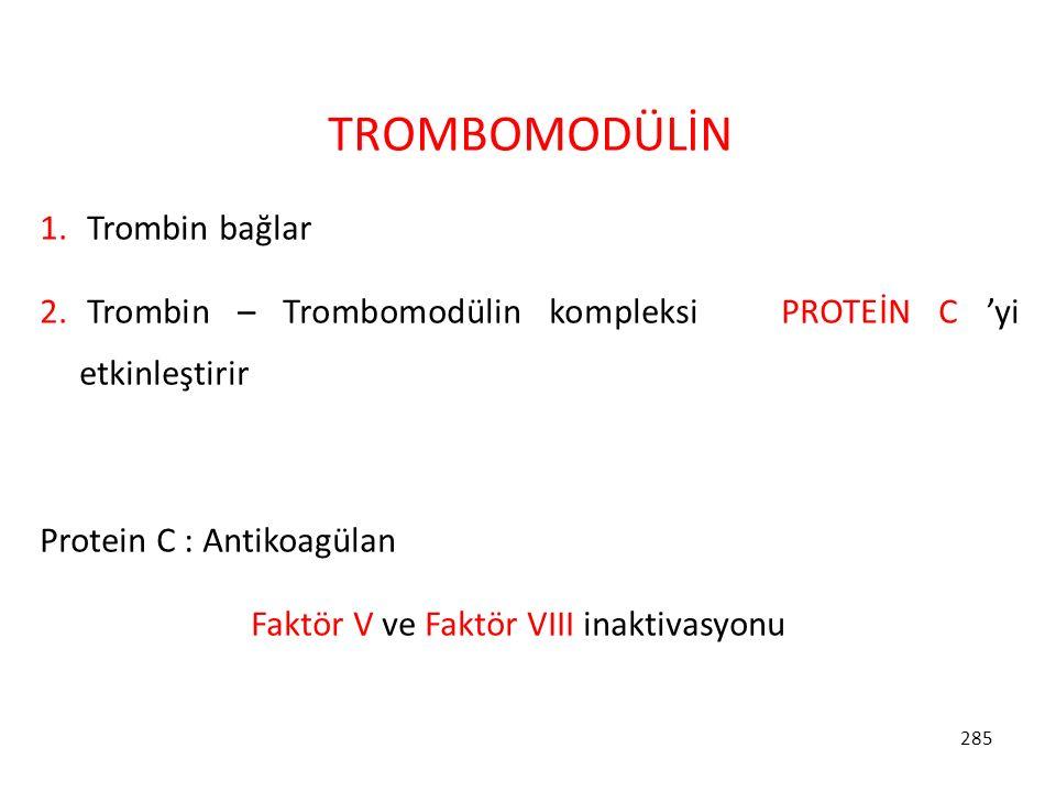 285 TROMBOMODÜLİN 1. Trombin bağlar 2. Trombin – Trombomodülin kompleksi PROTEİN C 'yi etkinleştirir Protein C : Antikoagülan Faktör V ve Faktör VIII