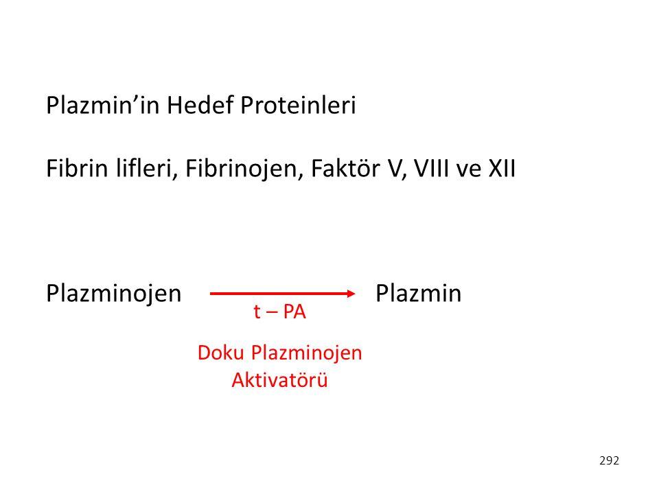 292 Plazmin'in Hedef Proteinleri Fibrin lifleri, Fibrinojen, Faktör V, VIII ve XII PlazminojenPlazmin t – PA Doku Plazminojen Aktivatörü