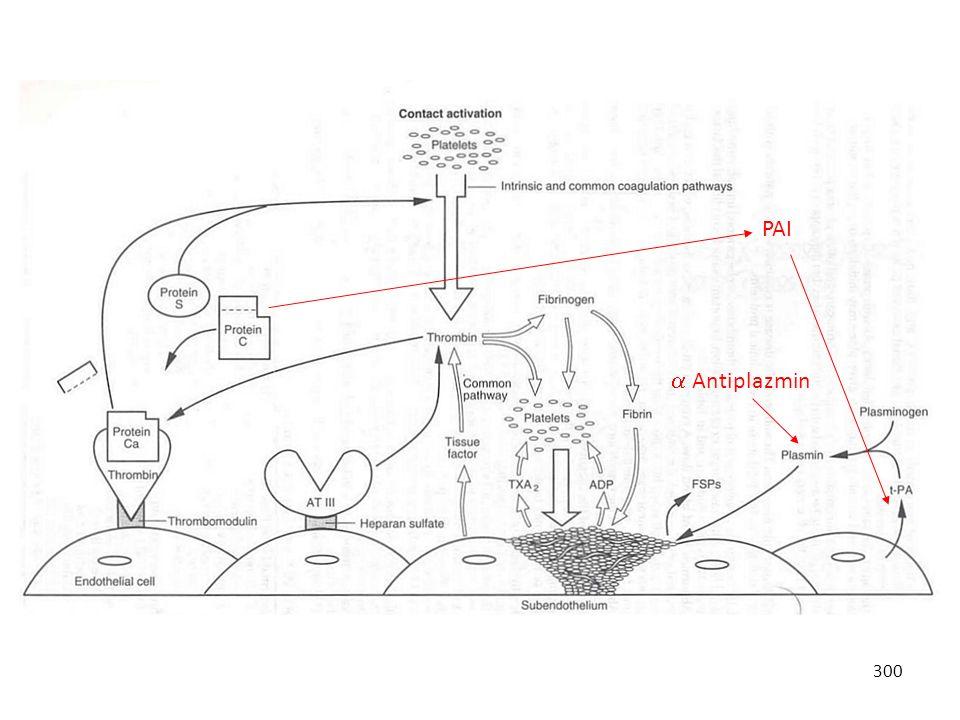 300 PAI  Antiplazmin