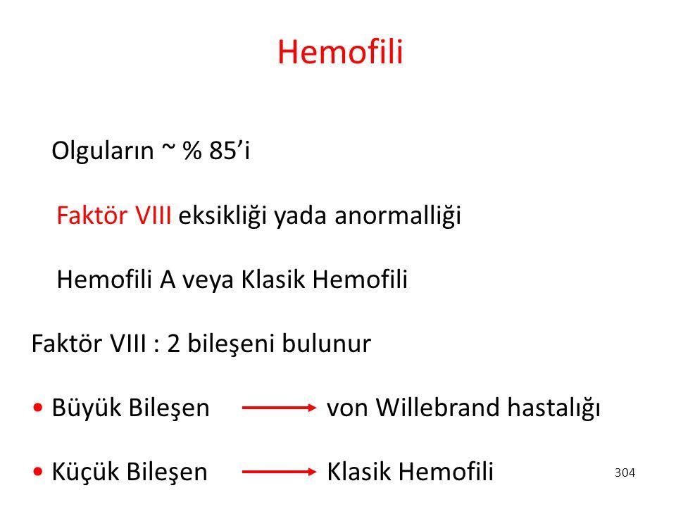 304 Hemofili Olguların ~ % 85'i Faktör VIII eksikliği yada anormalliği Hemofili A veya Klasik Hemofili Faktör VIII : 2 bileşeni bulunur Büyük Bileşen
