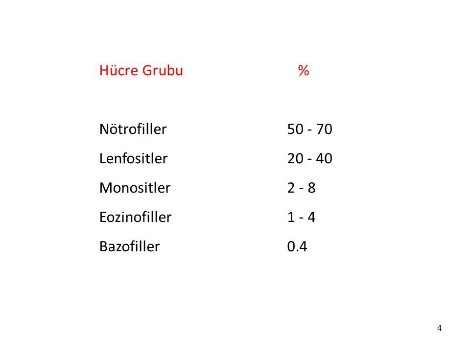 4 Hücre Grubu % Nötrofiller50 - 70 Lenfositler20 - 40 Monositler2 - 8 Eozinofiller 1 - 4 Bazofiller 0.4