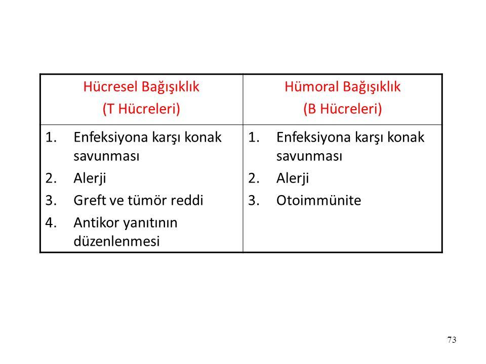 73 Hücresel Bağışıklık (T Hücreleri) Hümoral Bağışıklık (B Hücreleri) 1.Enfeksiyona karşı konak savunması 2.Alerji 3.Greft ve tümör reddi 4.Antikor ya