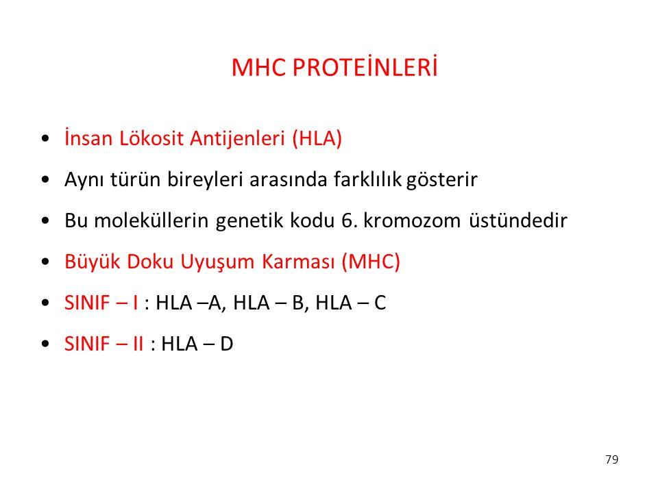 79 MHC PROTEİNLERİ İnsan Lökosit Antijenleri (HLA) Aynı türün bireyleri arasında farklılık gösterir Bu moleküllerin genetik kodu 6. kromozom üstündedi