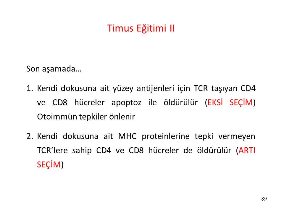89 Timus Eğitimi II Son aşamada… 1.Kendi dokusuna ait yüzey antijenleri için TCR taşıyan CD4 ve CD8 hücreler apoptoz ile öldürülür (EKSİ SEÇİM) Otoimm
