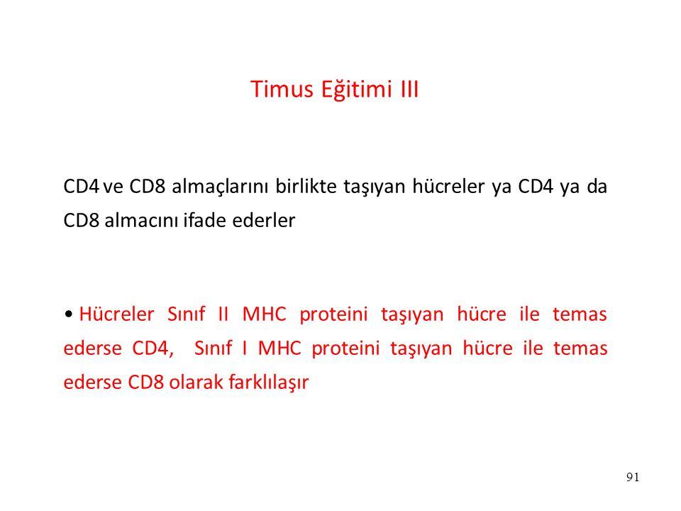 91 Timus Eğitimi III CD4 ve CD8 almaçlarını birlikte taşıyan hücreler ya CD4 ya da CD8 almacını ifade ederler Hücreler Sınıf II MHC proteini taşıyan h