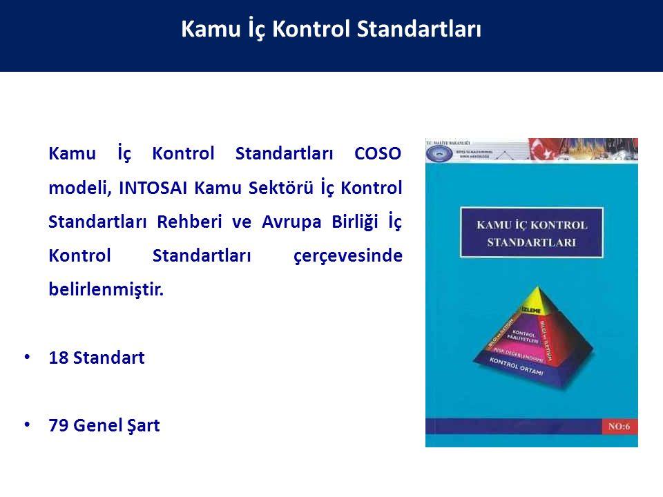 Kamu İç Kontrol Standartları COSO modeli, INTOSAI Kamu Sektörü İç Kontrol Standartları Rehberi ve Avrupa Birliği İç Kontrol Standartları çerçevesinde