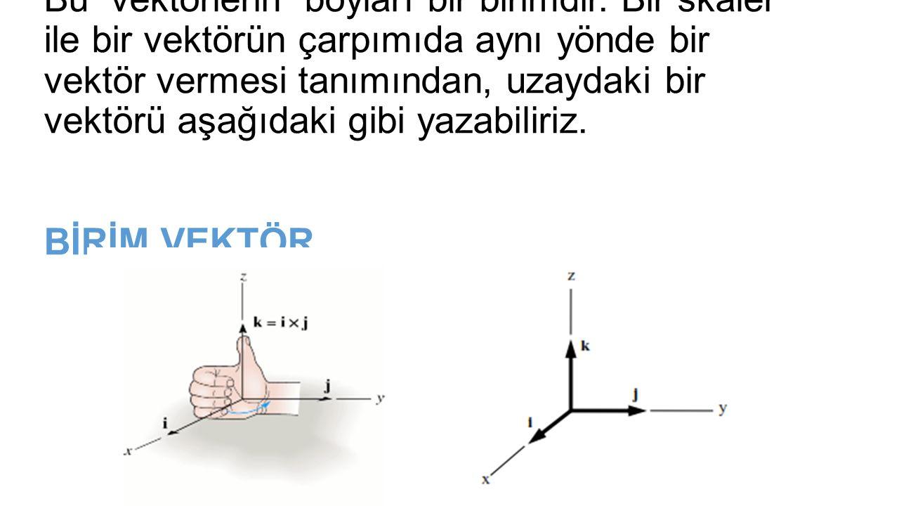 Bu vektörlerin boyları bir birimdir.