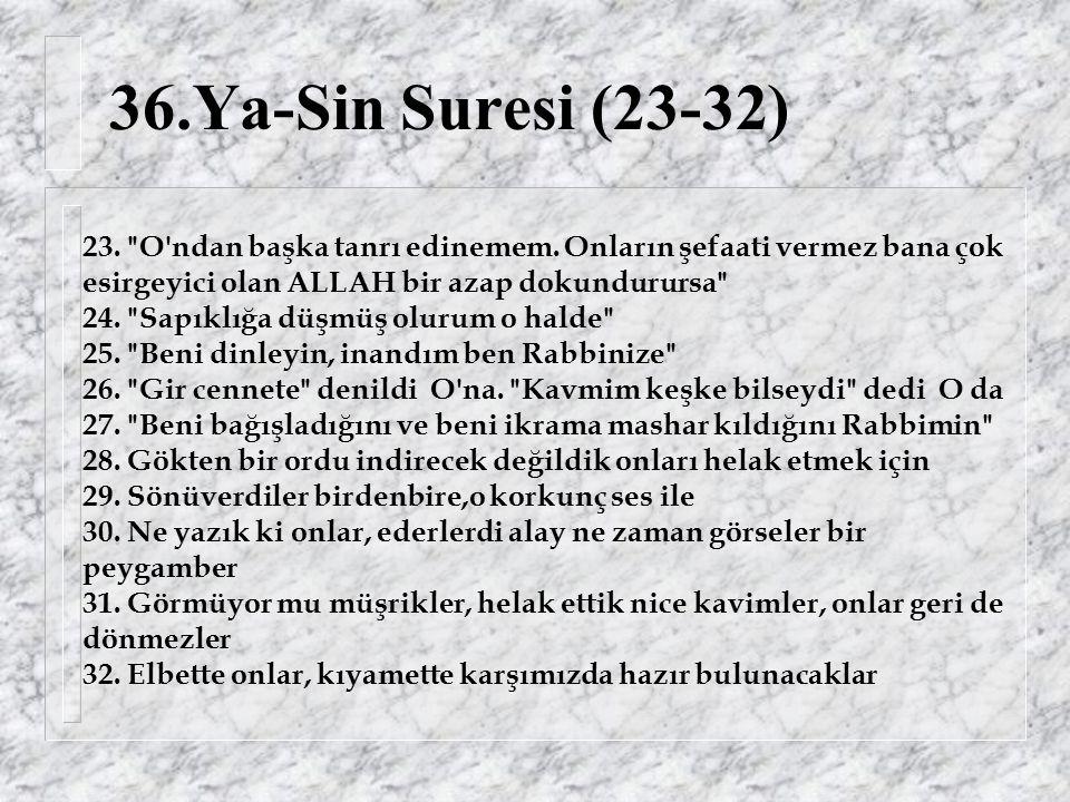36.Ya-Sin Suresi (23-32) 23. O ndan başka tanrı edinemem.