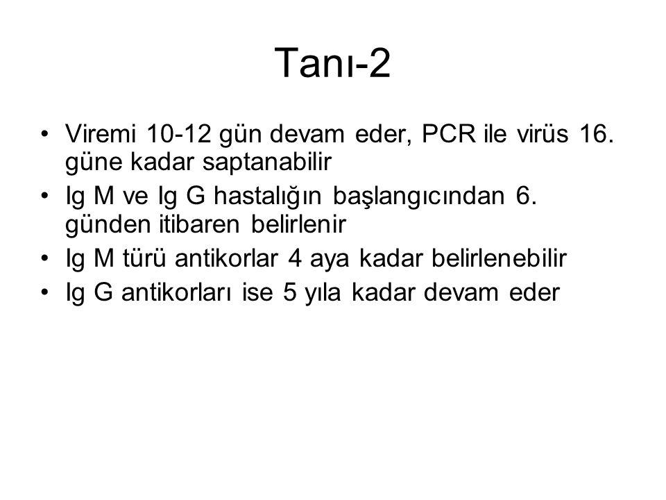 Tanı-2 Viremi 10-12 gün devam eder, PCR ile virüs 16.