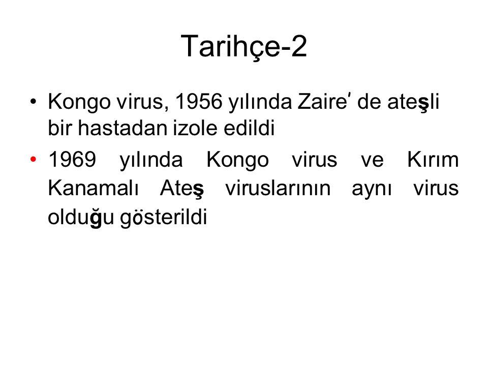 Tarihçe-2 Kongo virus, 1956 yılında Zaire ' de ateşli bir hastadan izole edildi 1969 yılında Kongo virus ve Kırım Kanamalı Ateş viruslarının aynı virus olduğu g ö sterildi