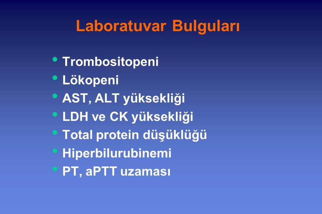 Trombositopeni Lökopeni AST, ALT yüksekliği LDH ve CK yüksekliği Total protein düşüklüğü Hiperbilurubinemi PT, aPTT uzaması Laboratuvar Bulguları