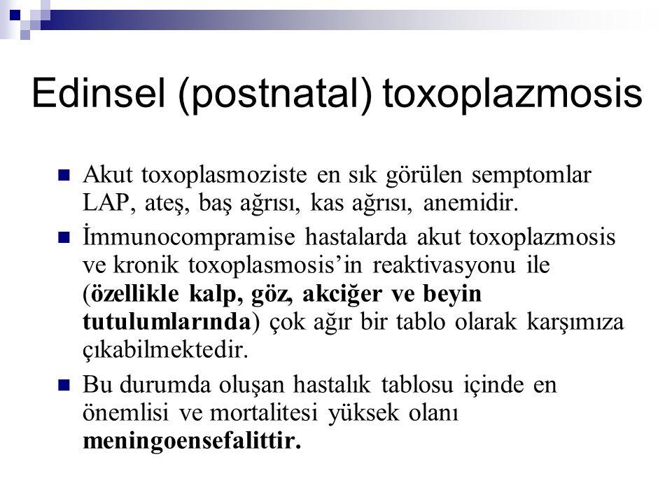 Edinsel (postnatal) toxoplazmosis Akut toxoplasmoziste en sık görülen semptomlar LAP, ateş, baş ağrısı, kas ağrısı, anemidir.