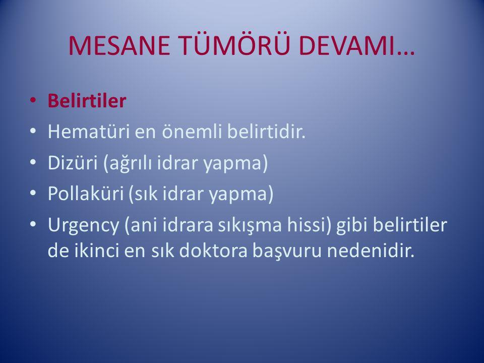 TANI:Mesane tümörü YAPILAN İŞLEM:TUR-M(TRANSÜRETRAL MESANE TÜMÖR REZEKSİYONU)
