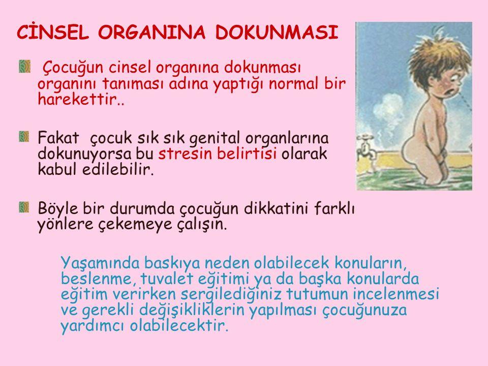 CİNSEL ORGANINA DOKUNMASI Çocuğun cinsel organına dokunması organını tanıması adına yaptığı normal bir harekettir..
