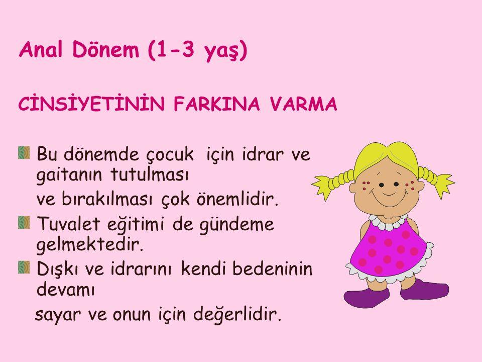 Anal Dönem (1-3 yaş) CİNSİYETİNİN FARKINA VARMA Bu dönemde çocuk için idrar ve gaitanın tutulması ve bırakılması çok önemlidir.
