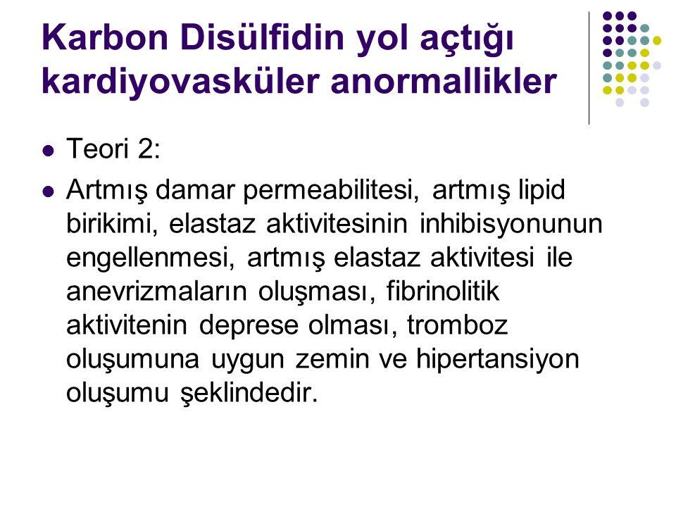 Karbon Disülfidin yol açtığı kardiyovasküler anormallikler Teori 2: Artmış damar permeabilitesi, artmış lipid birikimi, elastaz aktivitesinin inhibisyonunun engellenmesi, artmış elastaz aktivitesi ile anevrizmaların oluşması, fibrinolitik aktivitenin deprese olması, tromboz oluşumuna uygun zemin ve hipertansiyon oluşumu şeklindedir.