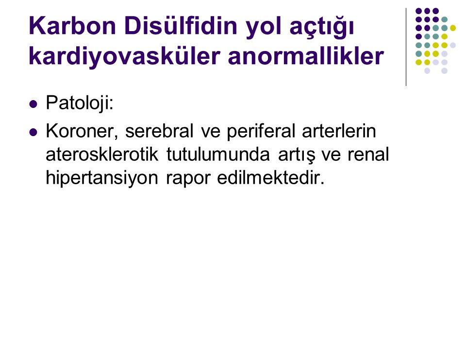Karbon Disülfidin yol açtığı kardiyovasküler anormallikler Patoloji: Koroner, serebral ve periferal arterlerin aterosklerotik tutulumunda artış ve renal hipertansiyon rapor edilmektedir.