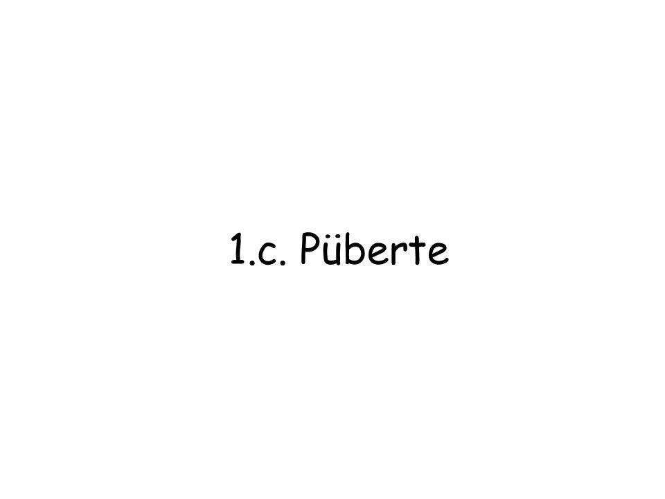 1.c. Püberte