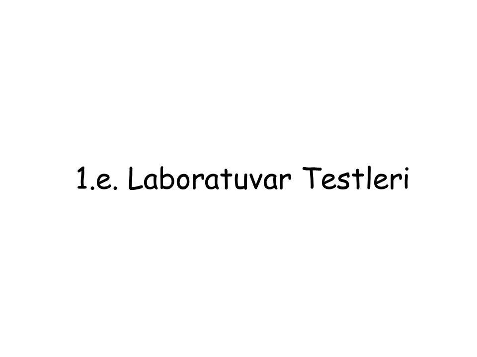 1.e. Laboratuvar Testleri
