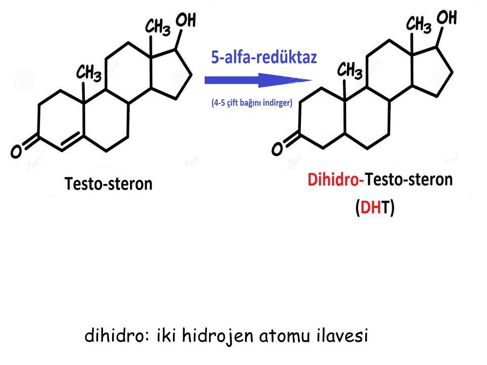 dihidro: iki hidrojen atomu ilavesi