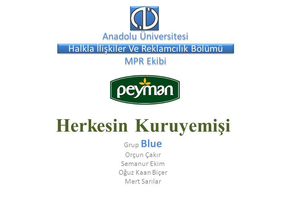 Kurum Analizi 1995 – Eskişehir'in üç kuruyemiş firması, elli yıla dayanan tecrübelerini birleştirerek Peyman Gıda A.Ş.'yi kurdu.