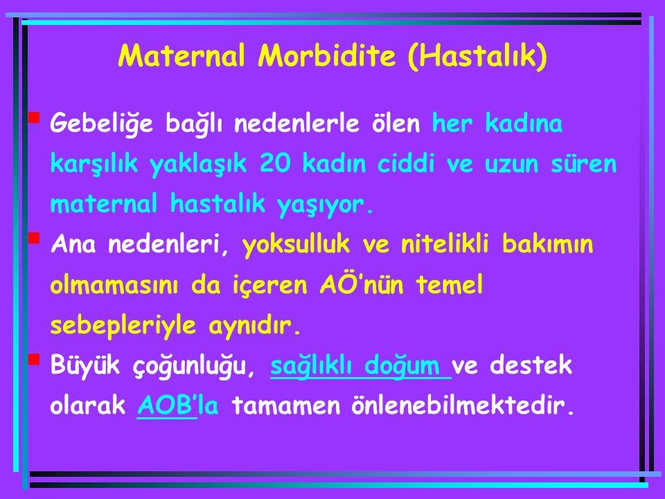Maternal Morbidite (Hastalık)  Gebeliğe bağlı nedenlerle ölen her kadına karşılık yaklaşık 20 kadın ciddi ve uzun süren maternal hastalık yaşıyor. 