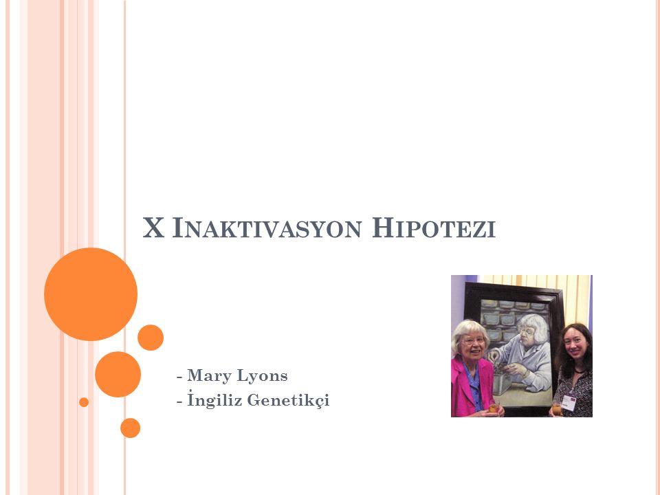 X I NAKTIVASYON H IPOTEZI - Mary Lyons - İngiliz Genetikçi