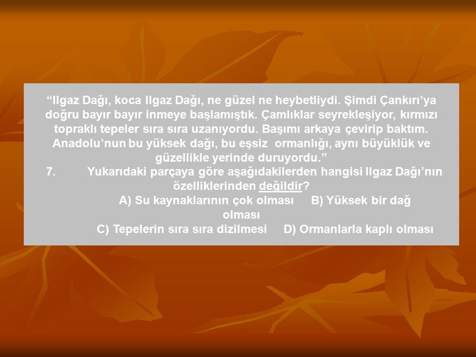 Hemen hemen bütün yabancı yazarların Türkçe-ye çevrilen deneme türündeki yapıtlarını alıp okuyordum.