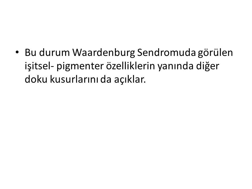 Bu durum Waardenburg Sendromuda görülen işitsel- pigmenter özelliklerin yanında diğer doku kusurlarını da açıklar.