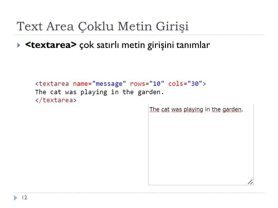 Text Area Çoklu Metin Girişi  çok satırlı metin girişini tanımlar 12 The cat was playing in the garden.