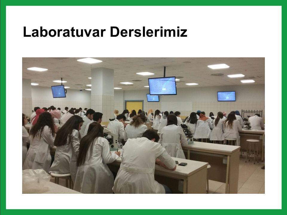 Laboratuvar Derslerimiz