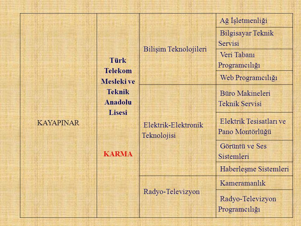 KAYAPINAR Türk Telekom Mesleki ve Teknik Anadolu Lisesi KARMA Bilişim Teknolojileri Ağ İşletmenliği Bilgisayar Teknik Servisi Veri Tabanı Programcılığ