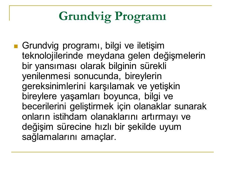 Grundvig Programı Grundvig programı, bilgi ve iletişim teknolojilerinde meydana gelen değişmelerin bir yansıması olarak bilginin sürekli yenilenmesi sonucunda, bireylerin gereksinimlerini karşılamak ve yetişkin bireylere yaşamları boyunca, bilgi ve becerilerini geliştirmek için olanaklar sunarak onların istihdam olanaklarını artırmayı ve değişim sürecine hızlı bir şekilde uyum sağlamalarını amaçlar.