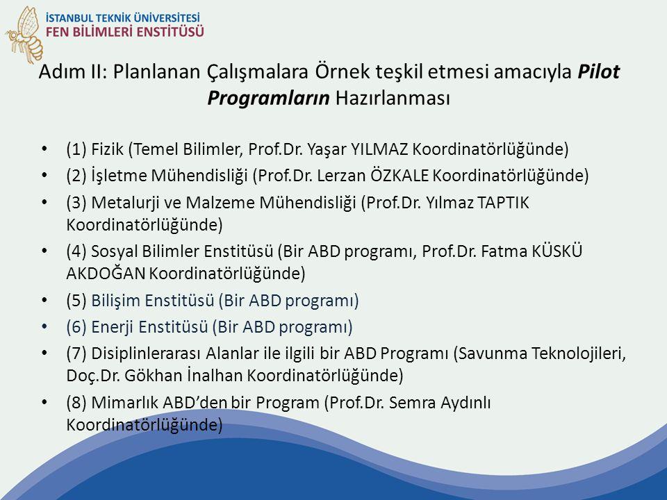 Adım II: Planlanan Çalışmalara Örnek teşkil etmesi amacıyla Pilot Programların Hazırlanması (1) Fizik (Temel Bilimler, Prof.Dr. Yaşar YILMAZ Koordinat