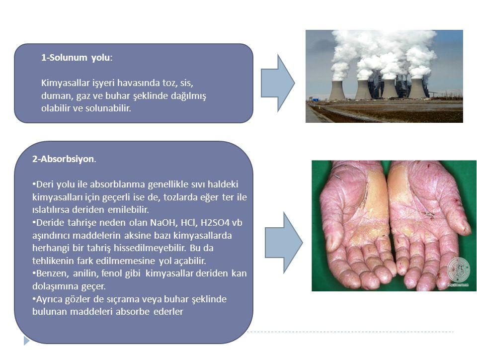 1-Solunum yolu: Kimyasallar işyeri havasında toz, sis, duman, gaz ve buhar şeklinde dağılmış olabilir ve solunabilir. 2-Absorbsiyon. Deri yolu ile abs