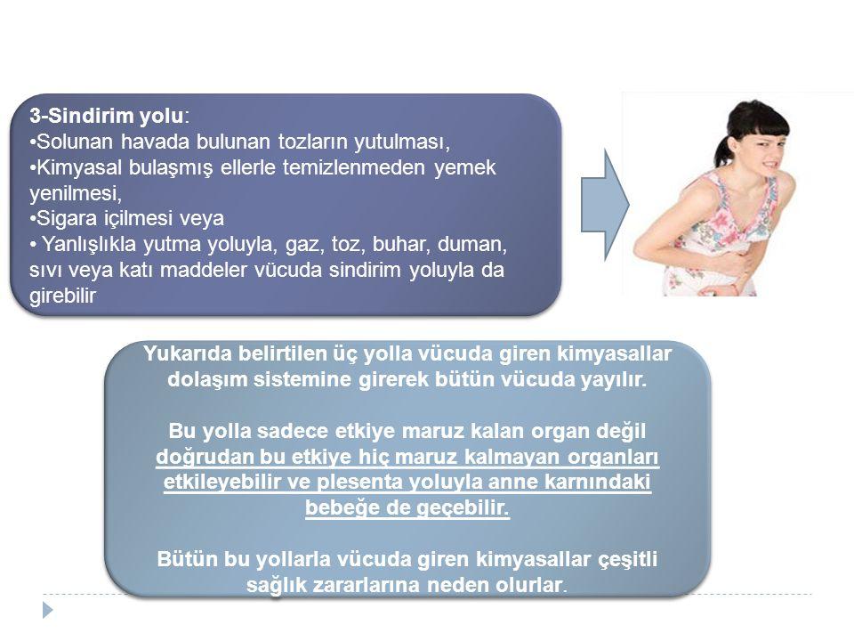 3-Sindirim yolu: Solunan havada bulunan tozların yutulması, Kimyasal bulaşmış ellerle temizlenmeden yemek yenilmesi, Sigara içilmesi veya Yanlışlıkla