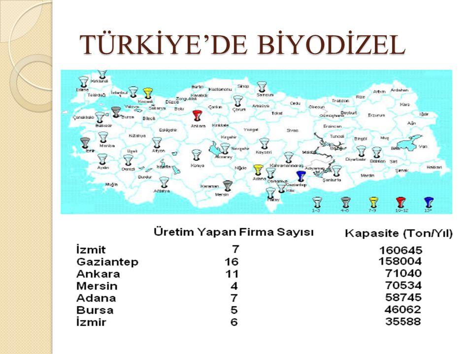 TÜRKİYE'DE BİYODİZEL