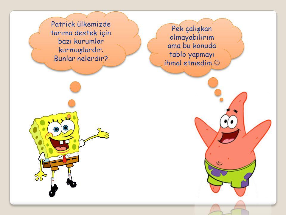 Patrick ülkemizde tarıma destek için bazı kurumlar kurmuşlardır. Bunlar nelerdir? Pek çalışkan olmayabilirim ama bu konuda tablo yapmayı ihmal etmedim