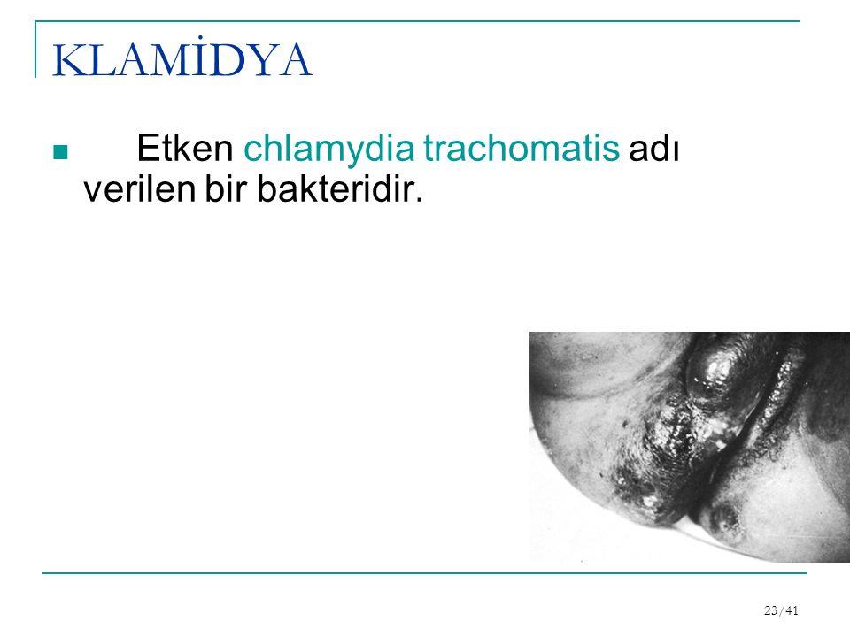 KLAMİDYA Etken chlamydia trachomatis adı verilen bir bakteridir. 23/41