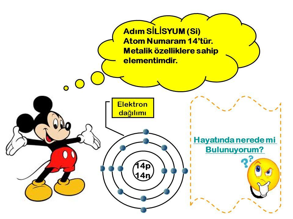 Adım S İ L İ SYUM (Si) Atom Numaram 14'tür. Metalik özelliklere sahip elementimdir. 14p 14n Elektron da ğ ılımı Hayatında nerede mi Bulunuyorum?