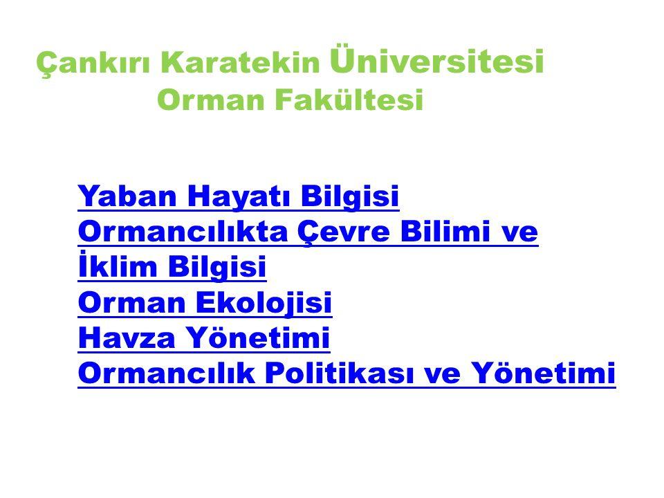 Çankırı Karatekin Üniversitesi Orman Fakültesi Yaban Hayatı Bilgisi Ormancılıkta Çevre Bilimi ve İklim Bilgisi Orman Ekolojisi Havza Yönetimi Ormancılık Politikası ve Yönetimi