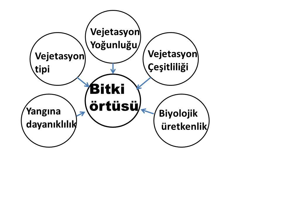 Teşekkür Ederim Prof. Dr. Sabit ERŞAHİN Çankırı Karatekin Üniversitesi Orman Fakültesi Dekanı
