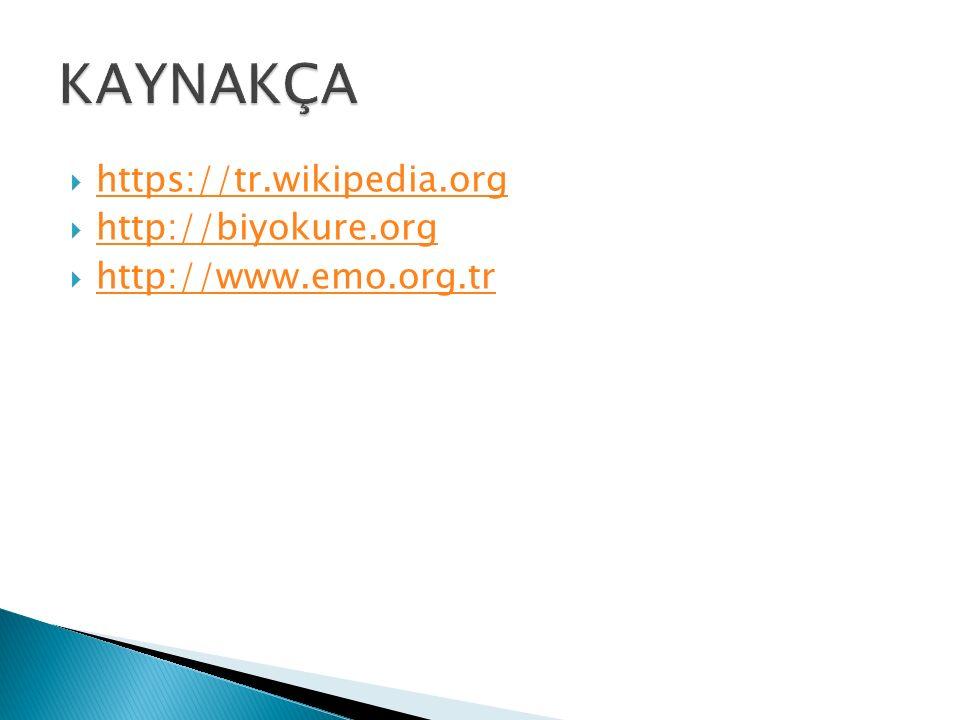  https://tr.wikipedia.org https://tr.wikipedia.org  http://biyokure.org http://biyokure.org  http://www.emo.org.tr http://www.emo.org.tr